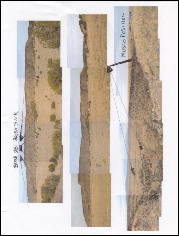 Basin photos with Musco position